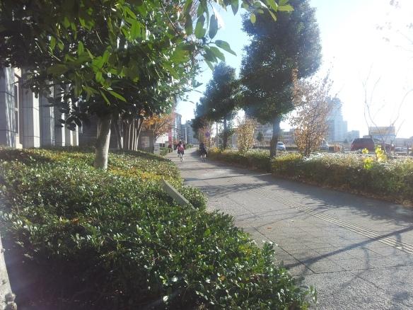 20121208_132032